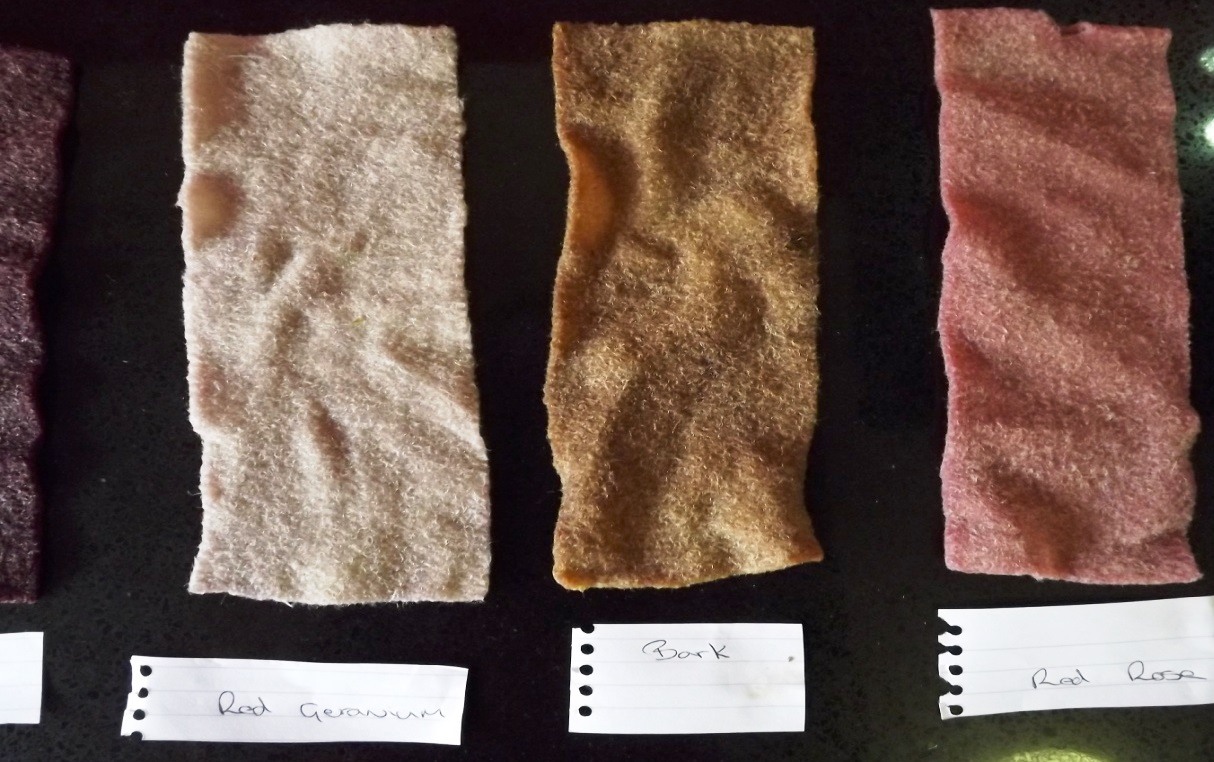 5 wool samples wet red geranium, barm, red rose
