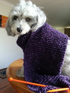 Pippa_before_losing_knitted_jacket_to_Kira_Meads_Shibori_Project